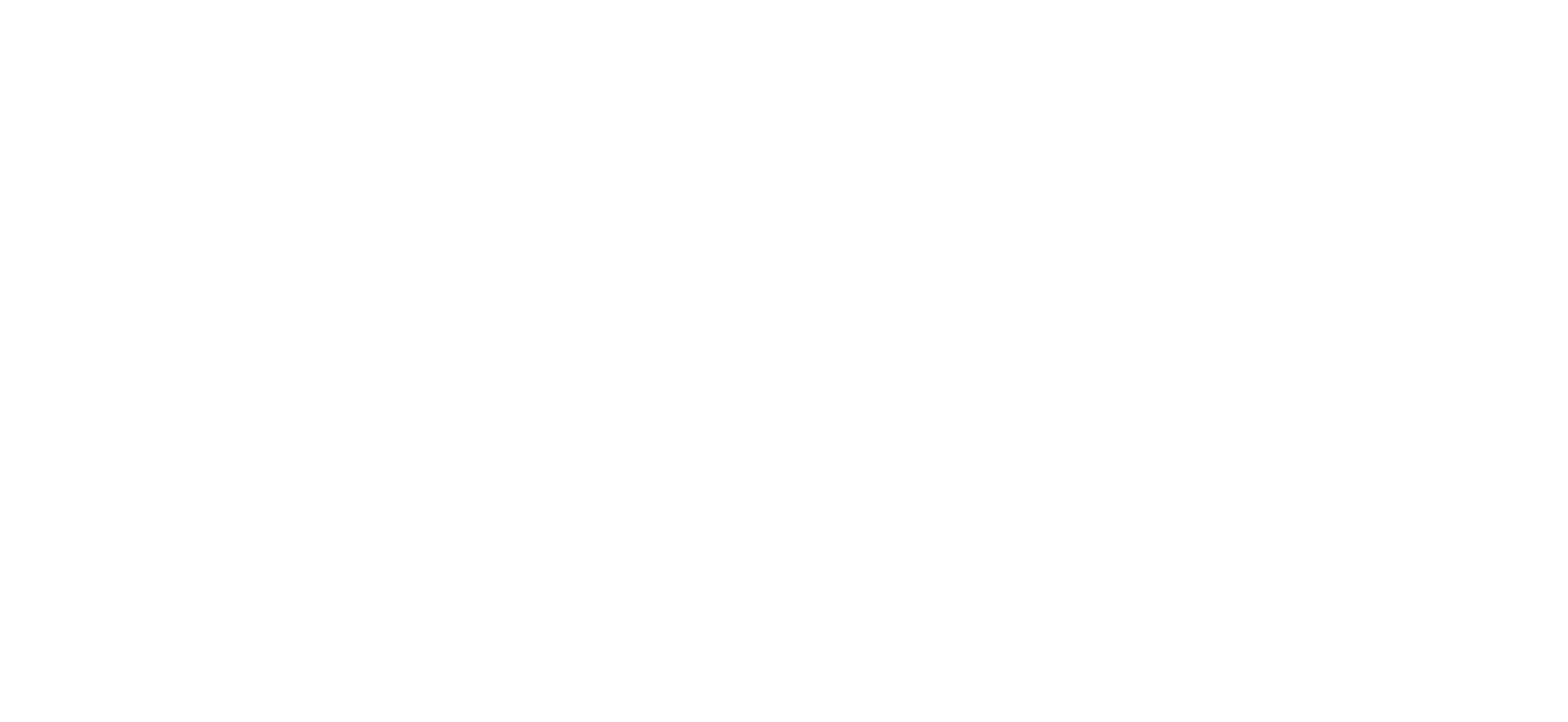 TROBOLO® Logo White