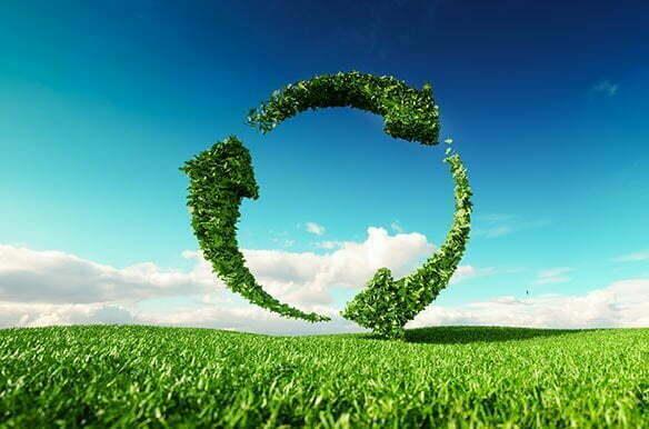 Nachhaltigkeit-Galerie-1