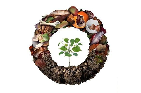 Richtig_Kompostieren-Galerie-1