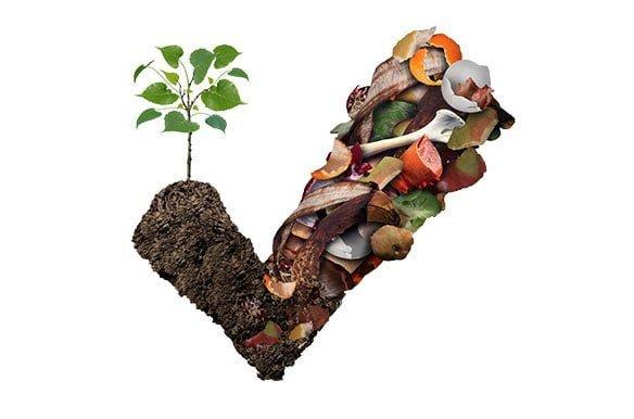 Richtig_Kompostieren-Galerie-3