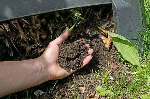 Richtig_Kompostieren-Galerie-5